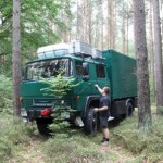 Irgendwo im Wald bei Neuruppin.