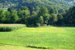 Natodraht an der Grenze Slowenien - Kroatien
