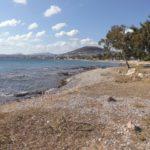 Der Strand von Artemida