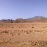 Wüstenimpressionen am Roten Meer