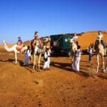 Kamele auf Kamelen...