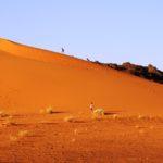 Wüste bei Meroe
